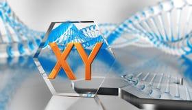 Gentechnikwissenschaftliches Konzept chromosom stock abbildung