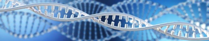 Gentechnikwissenschaftliches Konzept chromosom vektor abbildung