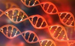 Gentechnikwissenschaftliches Konzept Forschung des menschlichen Genoms Genetische Änderung Biotechnologie von Zukunft lizenzfreie abbildung