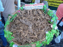 Gentiana Roots. ORIOLO ROMANO, ITALY - SEPTEMBER 25, 2016: Gentiana roots in sale at outdoor market during the Porcini Mushrooms Festival. It is used to produce royalty free stock photo
