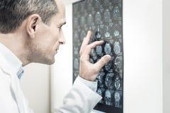 Gentil docteur beau regardant l'image de rayon de X Photo libre de droits