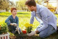 Gentil homme agréable enseignant son fils Photographie stock