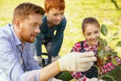 Gentil homme positif parlant à ses enfants Image stock