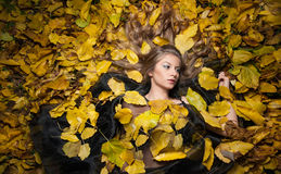 Gentille fille couverte de feuilles automnales Jeune femme fixant au sol couvert par le feuillage d'automne en parc Belle fille s Photographie stock