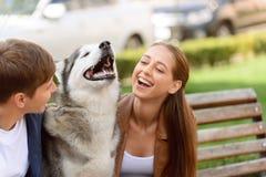 Gentille fille jouant avec le chien Photo libre de droits