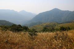 Genting scenery Stock Image