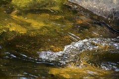 Gentle подача, река сахара, с пульсациями, Ньюпорт, Нью-Гэмпшир Стоковые Изображения RF