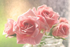 Gentle aquarel pink roses Stock Photo