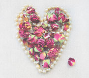 Gentle background with pink rosebud, petals and heart shaped pearl necklace  on white for wedding decoration. Stock Image