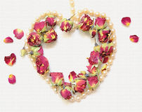 Gentle background with pink rosebud, rose petals and heart shaped pearl necklace  on white. Royalty Free Stock Images