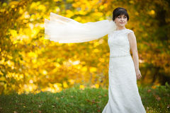 Gentle beautiful stylish young  bride on the background  thicke Stock Images