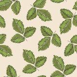 Gentle botanical composition. Seamless vector lighting pattern background 01. Gentle botanical composition. Seamless vector lighting pattern background stock illustration