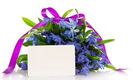 Gentle bouquet of blue squills and card Stock Images