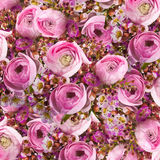 Gentle bouquet from pink roses and small Royalty Free Stock Images