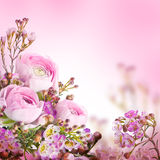 Gentle bouquet from pink Royalty Free Stock Images