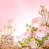 Gentle bouquet Royalty Free Stock Photos