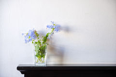 Gentle bouquet of Plumbago Auriculata on wooden deck table over Royalty Free Stock Images