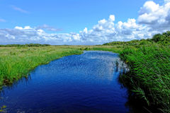 Gentle breeze peaceful landscape in summer. A small river with grasses swaying by a gentle breeze and white clouds in the blue sky. Summer season in South Stock Photos