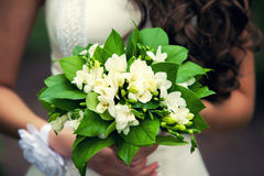 Gentle bridal bouquet in hands. Bridal bouquet of green color in hands Stock Photo