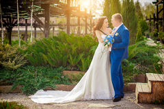 Gentle bride and groom Royalty Free Stock Photography