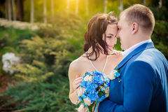 Gentle bride and groom Royalty Free Stock Photos