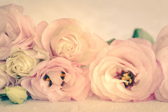 Gentle Colors of Vintage Flowers Background Stock Images
