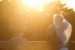 Gentle couple hugging  under veil on background sunset Royalty Free Stock Photos