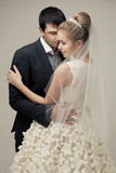 Gentle couple of lovers groom and bride. Royalty Free Stock Image
