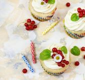 Gentle cupcake with cream and berries nd a candle a light background royalty free stock photos