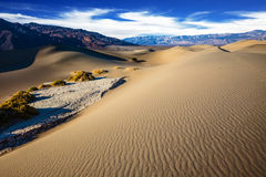 The gentle curves of sand dunes Royalty Free Stock Photos