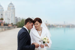 Gentle embrace bride and groom. Groom kissgroom kiss on the pier Royalty Free Stock Photography