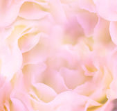Gentle Floral Background / Flower's petals are made as macro sho Stock Photos