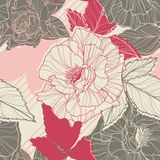 Gentle floral seamless pattern with handdrawn. Roses. Vintage style Royalty Free Stock Images