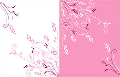 Gentle flower vector ornament Royalty Free Stock Photo