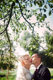 Gentle full of love stylish cute young couple on the background Royalty Free Stock Photography