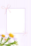 Gentle greeting card Royalty Free Stock Photos