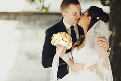 Gentle hugs of just married couple Royalty Free Stock Image