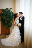 Gentle kiss bride and groom Royalty Free Stock Photo