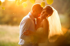 Gentle  is kissing his smiling bride on the background green for Royalty Free Stock Image