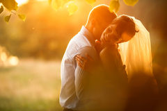 Gentle  is kissing his smiling bride on the background green for Royalty Free Stock Photos