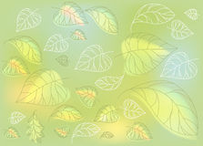 Gentle light illustration graphic forest leaves vector background Stock Photo