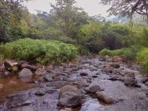 Gentle Low River Flows. Under the bright sunlit sky, clear flowing water gently navigates along the rocky river bed bordered by dense green vegetation ranging stock photo