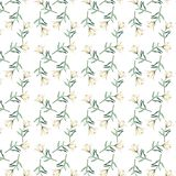 Gentle refined beautiful seamless pattern of white beige powdery lilies watercolor Stock Images