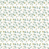 Gentle refined beautiful seamless pattern of white beige powdery lilies Stock Images