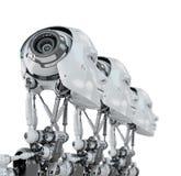 Gentle robotic women Royalty Free Stock Image