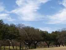 Gentle Rolling Hills at Tenison Highland Course stock images