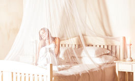 Gentle romantic morning Royalty Free Stock Image