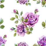 Gentle roses pattern Royalty Free Stock Photography