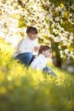 Gentle sisters hug apple blossom, sunny childhood. Delicate girls sisters hug around the branches of apple blossom, bright, sunny childhood, spring concept Stock Images
