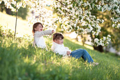 Gentle sisters hug apple blossom, sunny childhood Stock Photography